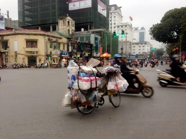 Gut_Vietnam7