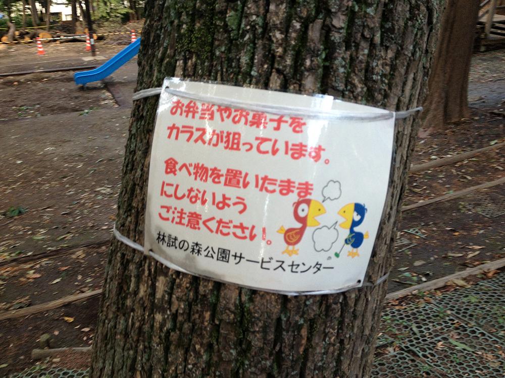 TokyoJogIMG_5038