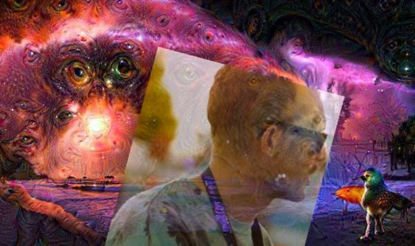 Melt-LSD-1