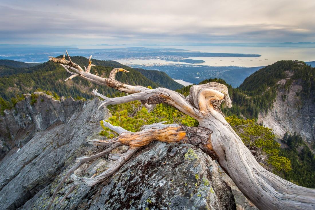 Tomas Jirku (photo) - 3. Crown Mountain_