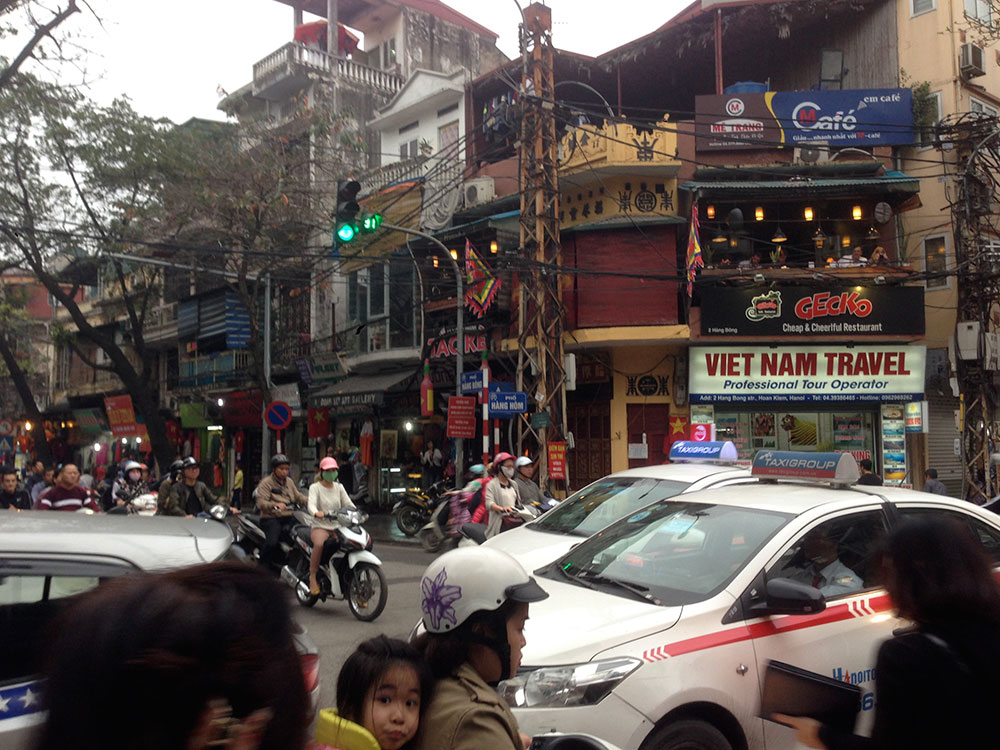 Gut_Vietnam3