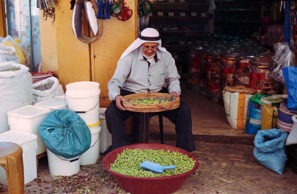 palae_20_man-and-his-olives-jenin